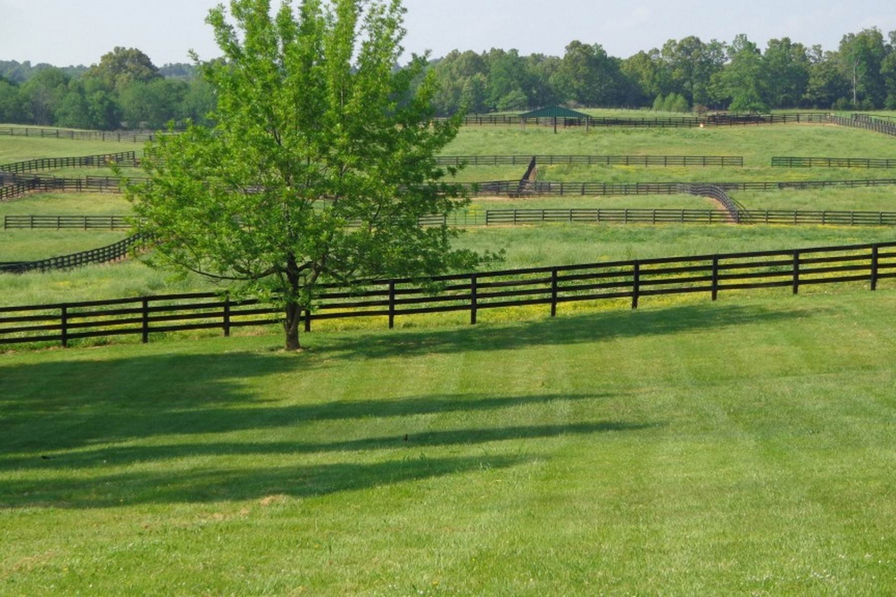 6. Farm and Ranch Properties for Sale at 4770 Grooms Lane Princeton, Kentucky 42445 United States