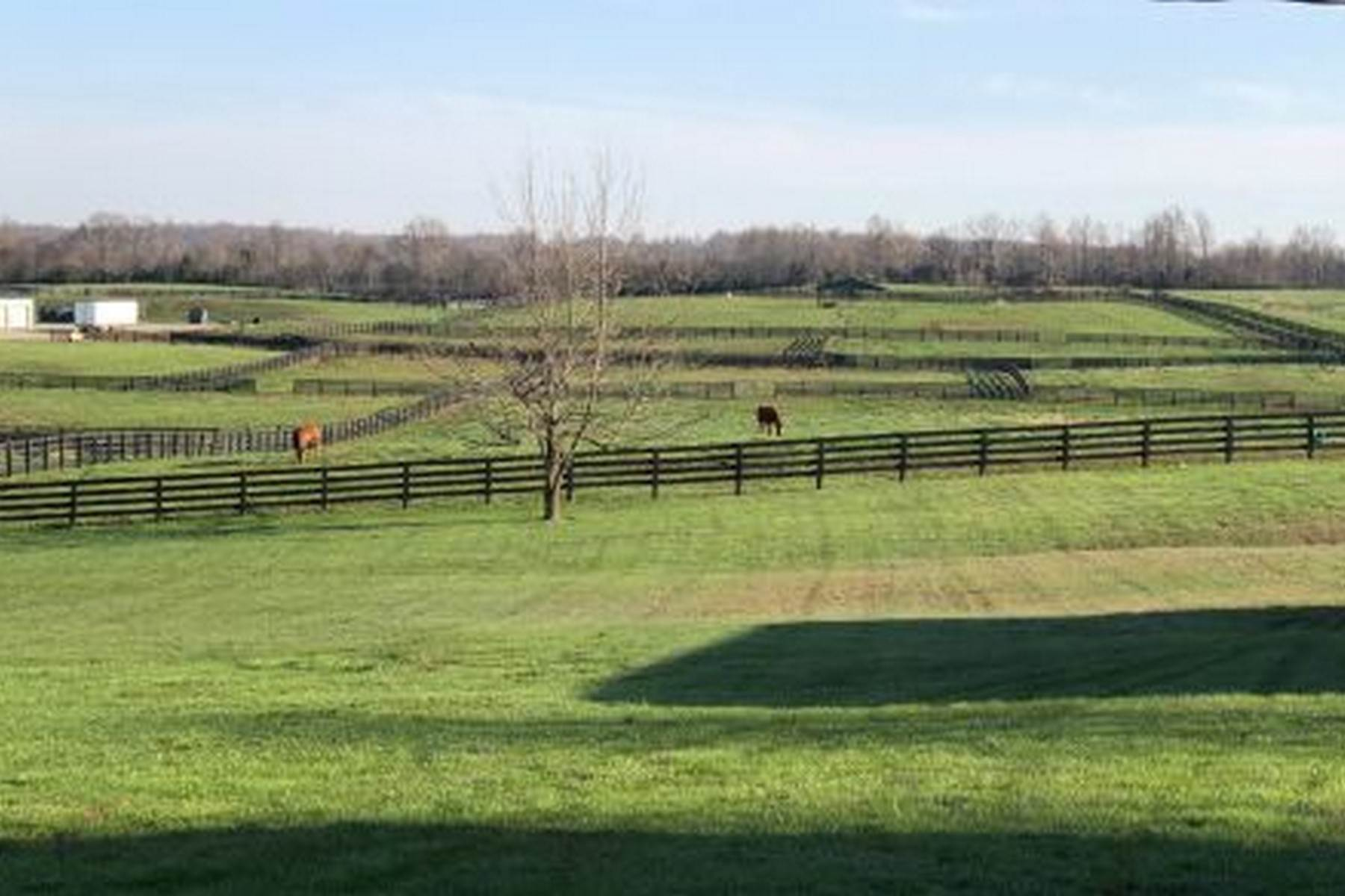 24. Farm and Ranch Properties for Sale at 4770 Grooms Lane Princeton, Kentucky 42445 United States