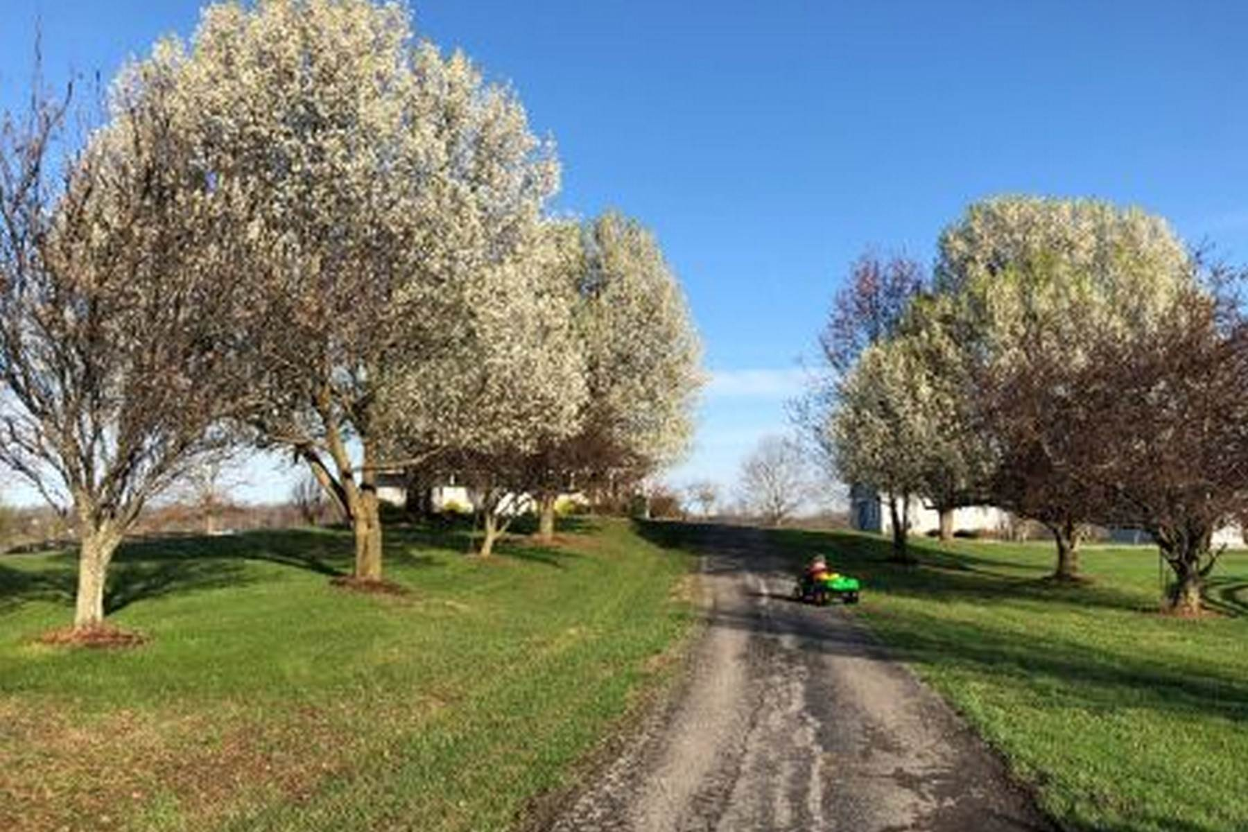 26. Farm and Ranch Properties for Sale at 4770 Grooms Lane Princeton, Kentucky 42445 United States